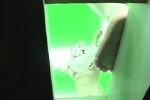 エロ画像7